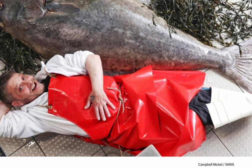 Óriási laposhalat zsákmányoltak Skóciában
