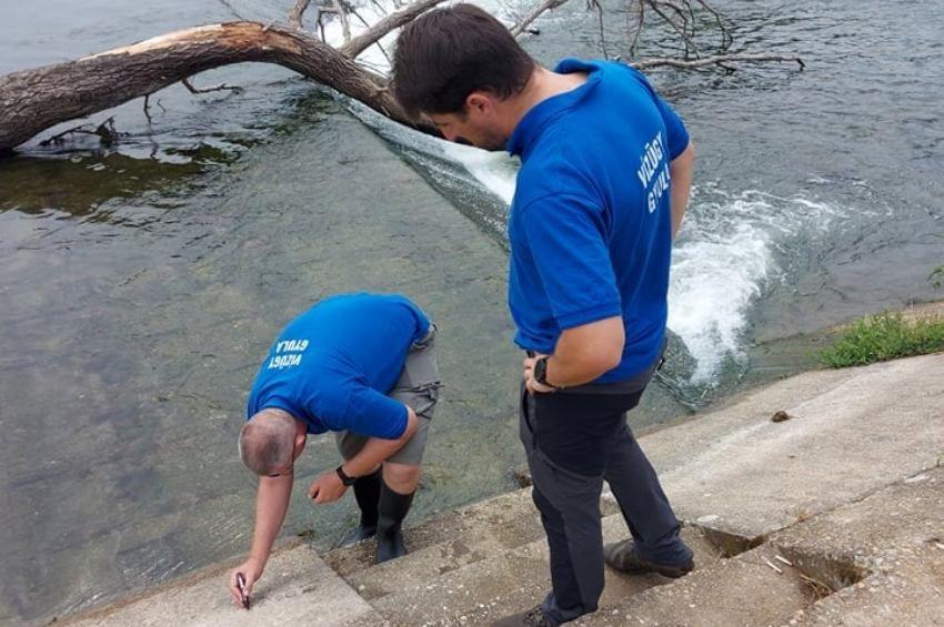 Románokkal közös vízügyi beavatkozásra készülnek a Holt-Sebes-Körösön