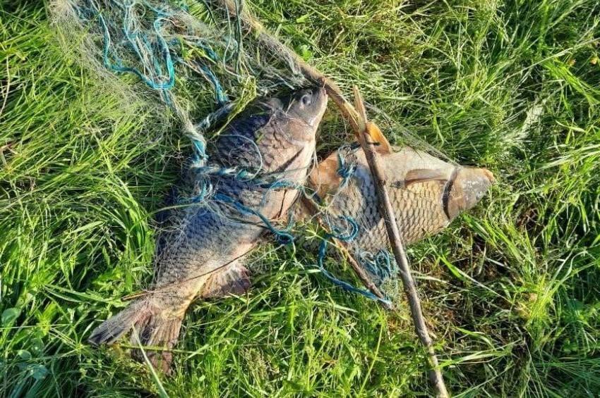 Három orvhalászt értek tetten a tiszai halőrök
