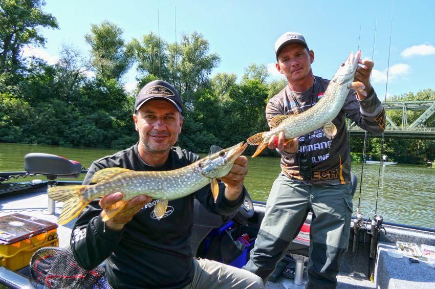 70 hal 7 fajból a Békés Megyei Csónakos Pergetőversenyen