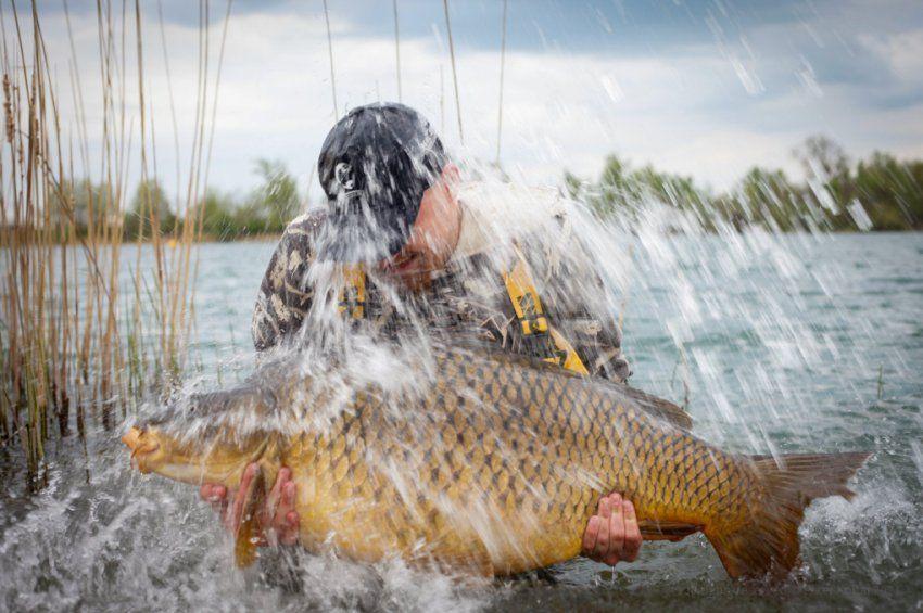 30.000 forint értékben sorsolunk ki horgászati lehetőséget a Fish'n Go jóvoltából!