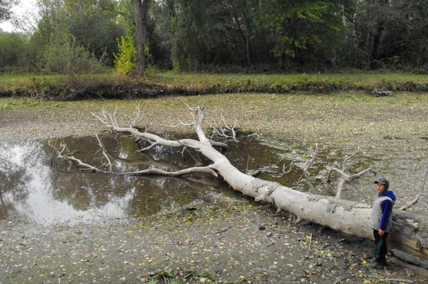 Nem csak a Velencei-tónál égető probléma a vízhiány
