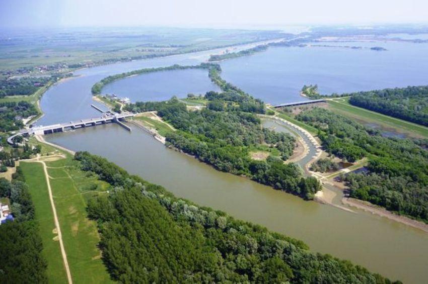 Segítette az árvíz a halak ívását a Tisza-tónál