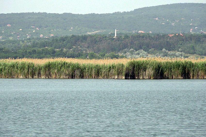 Leállították a Velencei-tó vízpótlását, mert rosszak a vízminőségi eredmények